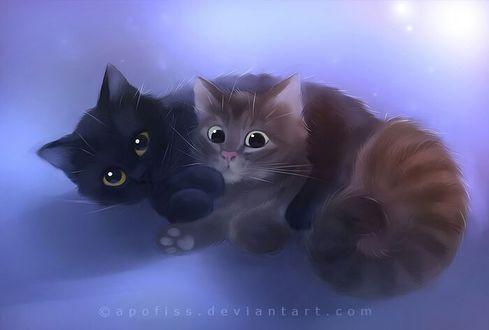 Фото Черный котенок обнимает полосатого котенка, by Apofiss