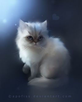 Фото Милый белый пушистый котенок, by Apofiss (© Margo Fly), добавлено: 20.03.2017 16:53