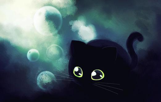 Фото Притаившийся большеглазый черный кот в окружении пузырей (© Margo Fly), добавлено: 20.03.2017 17:22