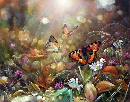 Фото Пестрые бабочки порхают над цветами в лучах солнца. Художник Александр Желонкин