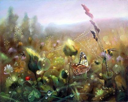 Фото Бабочка, шмели, божья коровка в цветах и траве. Художник Александр Желонкин