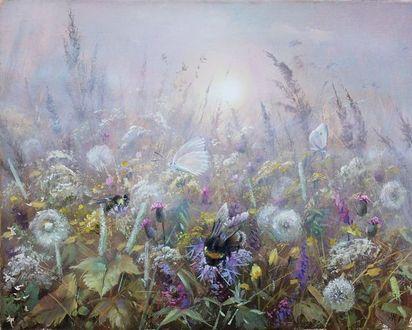 Фото Шмели и бабочки на цветах в траве на фоне солнца в тумане. Художник Александр Желонкин (© Margo Fly), добавлено: 20.03.2017 18:30