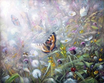 Фото Порхающие бабочки над цветами, на туманном фоне природы. Художник Александр Желонкин (© Margo Fly), добавлено: 20.03.2017 18:32