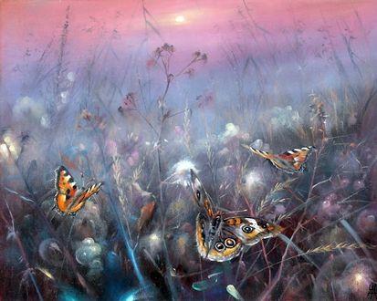 Фото Пестрые бабочки порхают над цветами в туманной дымке на фоне закатного неба. Художник Александр Желонкин (© Margo Fly), добавлено: 20.03.2017 18:38