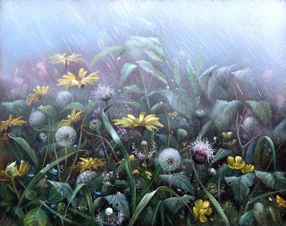 Фото Луговые цветы под дождем. Художник Александр Желонкин (© Margo Fly), добавлено: 20.03.2017 18:49