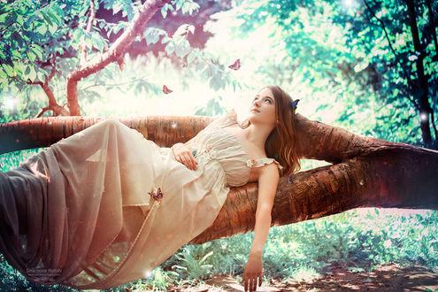 Фото Модель Олеся в длинном платье лежит на стволе дерева в окружении бабочек. Фотохудожник Смирнова Наталья