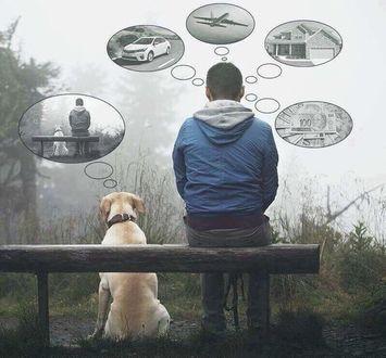 Фото Парень с собакой сидят и каждый мечтает о чем-то важном