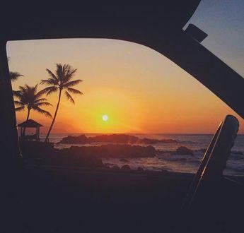 Фото Из окна автомобиля виден закат у моря с пальмами