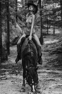 Фото Обнаженная девушка в шляпе на лошади. Фотограф Курта Аркадий