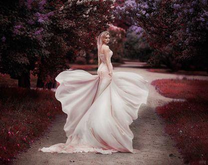 Фото Девушка в белом платье стоит на дорожке, фотограф Светлана Беляева