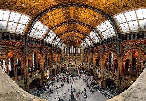 Фото Панорамный вид Исторического музея в Лондоне, вид сверху, by Adrian Petrisor