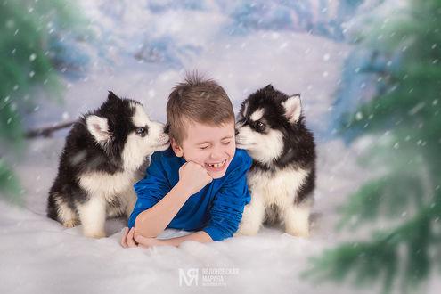 Фото Смеющийся мальчик с щенками. Фотограф Марина Яблоновская