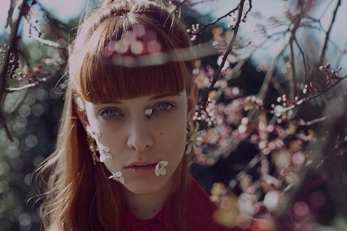 Фото Девушка с рыжими волосами стоит за цветущей весенней веткой дерева, фотограф Marta Bevacqua