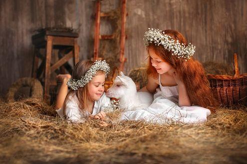 Фото Две девочки с венками из цветов сидят с белой козочкой на сеновале. Фотограф Лилия Ульянова
