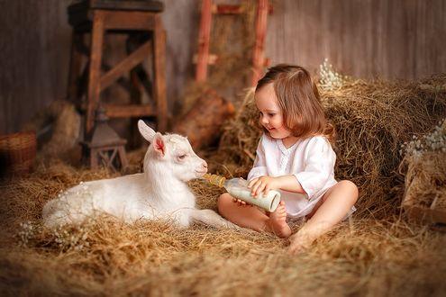 Фото Маленькая девочка в белом платье кормит козу молоком из бутылочки с соской. Фотограф Лилия Ульянова
