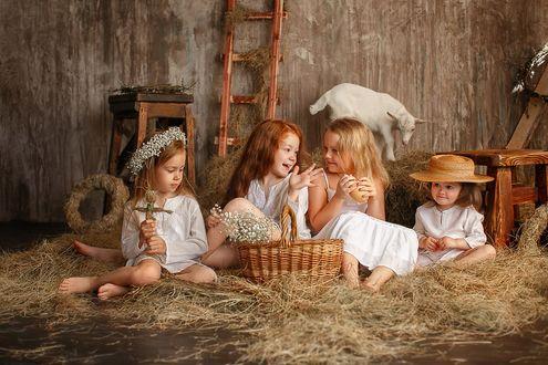 Фото Девочки в белых нарядах сидят на сене и беседуют, позадих них стоит белая коза. Фотограф Лилия Ульянова