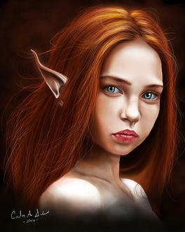 Фото Девушка-эльф с рыжими волосами, by carlos-salva-art