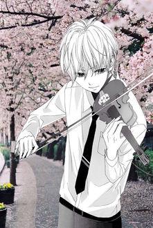 Фото Парень со скрипкой стоит на фоне цветущих весенних деревьев