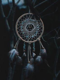 Фото Ловец снов висит на ветках в темноте