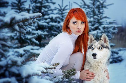 Фото Девушка в зимнем лесу с хаски