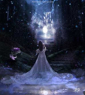 Фото Девушка в длинном платье стоит на фоне ночного неба с луной, по одну из сторон к ней спускается волк с сиреневым огнем, by StarsColdNight