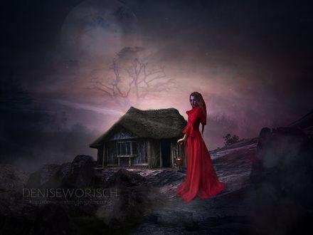 Фото Девушка в длинном красном платье держит корзинку в руках, by DeniseWorisch