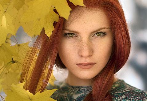 Фото Портрет красивой рыжеволосой девушки с желтыми кленовыми листьями. Фотограф Таня Маркова