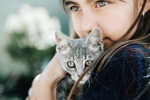 Фото Девочка с котенком, фотограф Gabriela Tulian
