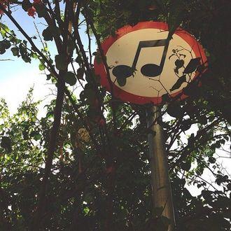 Фото Столб со знаком мелодии стоит среди деревьев