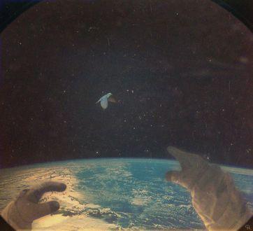 Фото Из иллюминатора руки космонавта тянутся к птице, летающей в открытом космосе (© a_m_i_na), добавлено: 25.03.2017 20:17