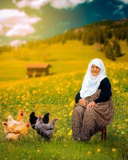 Фото На поле сидит бабушка на стуле, рядом ходят куры (город Анадолу, Турция)