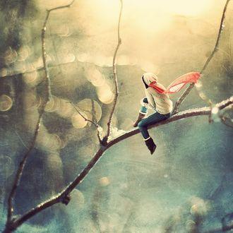 Фото Девушка в миниатюре сидит на ветке дерева, на размытом фоне с боке