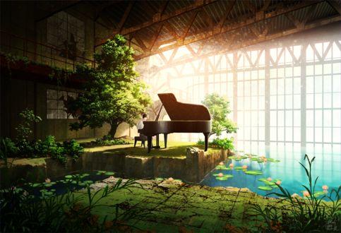 Фото Парень играет на пианино в заброшенной оранжерее