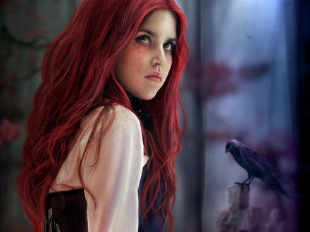 Фото Девушка с яркими волосами и с вороном, by Dimi Papadimitriou