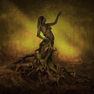 Фото Полуобнаженная девушка в образе дерева, из под земли к ней тянутся руки, by Darek Kocurek