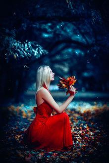 Фото Белокурая девушка в красном платье с осенними листьями в руках на размытом фоне природы. Фотограф Руслан Болгов