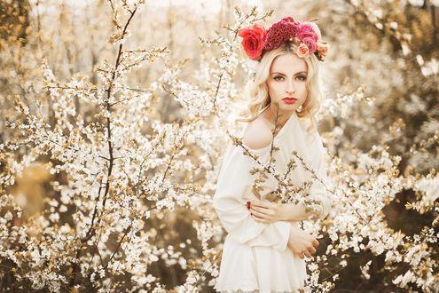 Фото Белокурая девушка с венком из цветов стоит у цветущих деревьев. Фотограф Александр Джеймесон