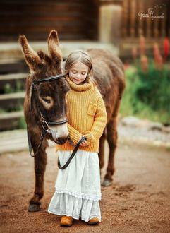 Фото Девочка стоит рядом с осликом, фотограф Недялкова Ирина