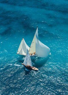 Фото Парусники на воде