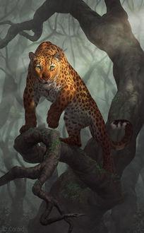 Фото Леопард стоит на ветке дерева, by LhuneArt