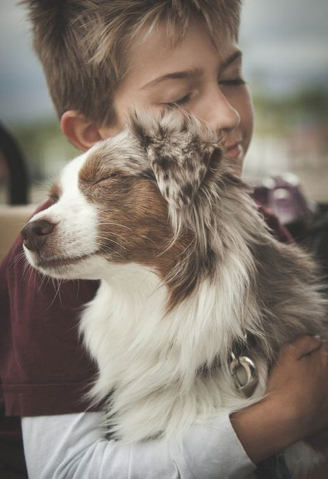 Фото Мальчик обнимает собаку породы австралийская овчарка