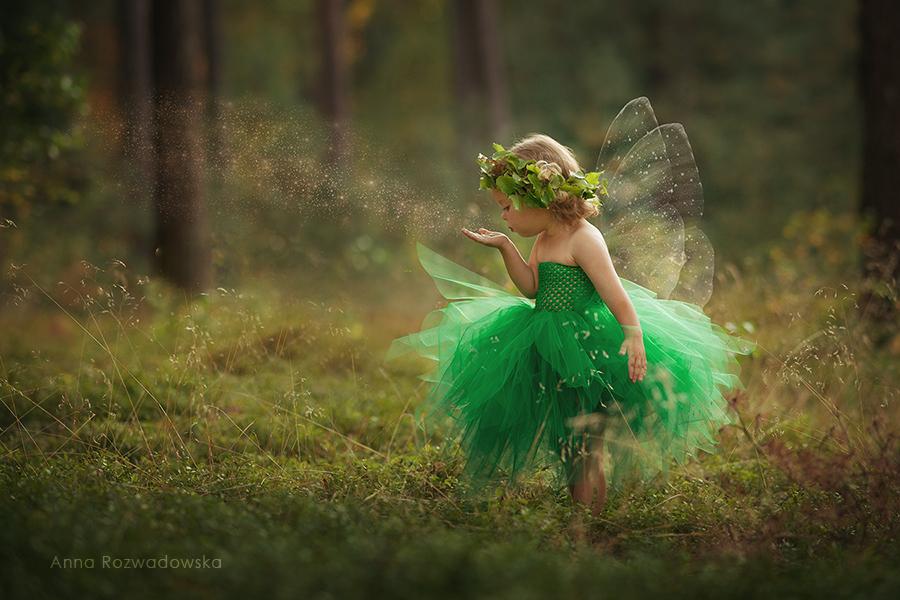 Фото Девочка - мотылек с венком из цветов сдувает с руки блестящие частички, by Anna Rozwadovsrf