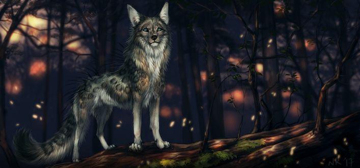 Фото Фантастический волк стоит на упавшем дереве, by NukeRooster
