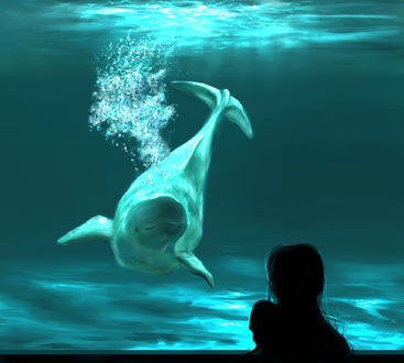 Фото Девушка смотрит на дельфина, by saya