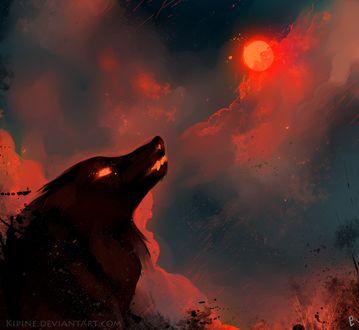 Фото Силуэт волка на фоне огненного неба, by Kipine