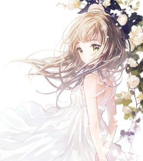 Фото Девушка стоит у куста цветов