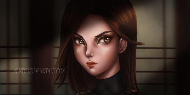 Фото Персонаж из игры Assassins Creed II / Кредо ассасинов II, by Nindei
