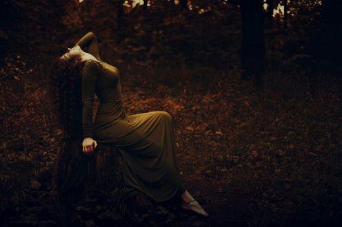 Фото Девушка сидит в лесу на пне запрокинув голову назад (© Margo Fly), добавлено: 20.04.2017 03:24