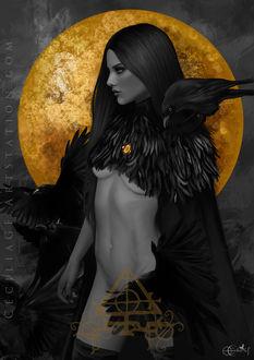 Фото Девушка с оголенным телом с вороном на плече, by Cecilia G. F (© zmeiy), добавлено: 20.04.2017 10:33
