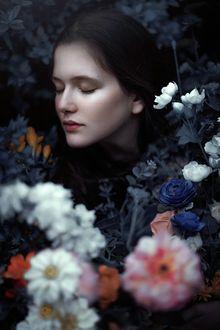 Фото Девушка в окружении цветов, фотограф Adi Dekel
